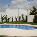 vivero-costa-rica-mantenimiento-condominio-04