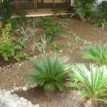 vivero-costa-rica-mantenimiento-condominio-110