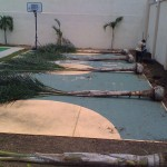 vivero-costa-rica-mantenimiento-condominio-72