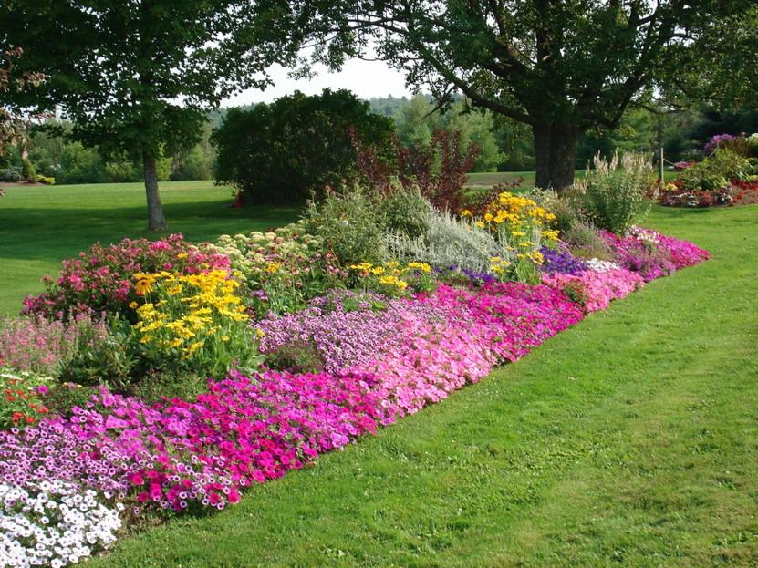 25 Consejos de Jardinería Ecológica | Vivero Flora Vitae