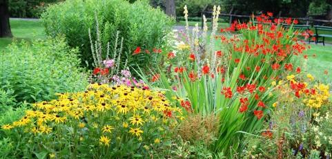 25 Consejos de Jardinería Ecológica