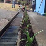 vivero-flora-vitae-mantenimiento-06