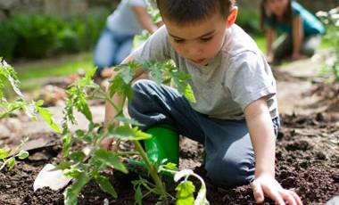 Crear un jardín con niños