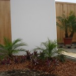 vivero-costa-rica-mantenimiento-condominio-10
