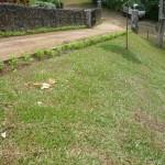 vivero-costa-rica-mantenimiento-condominio-103