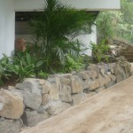 vivero-costa-rica-mantenimiento-condominio-105