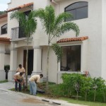 vivero-costa-rica-mantenimiento-condominio-113