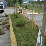 vivero-costa-rica-mantenimiento-condominio-20