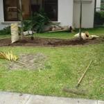 vivero-costa-rica-mantenimiento-condominio-42