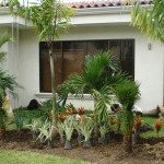 vivero-costa-rica-mantenimiento-condominio-44