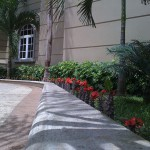vivero-costa-rica-mantenimiento-condominio-56