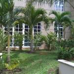 vivero-costa-rica-mantenimiento-condominio-57